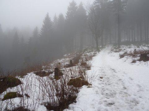 Beginn Magdeburger Weg