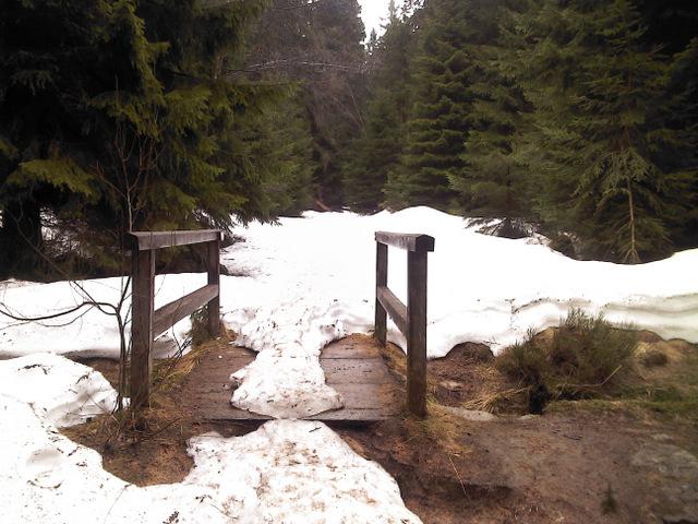 hexenstieg-im-winter.jpg-1