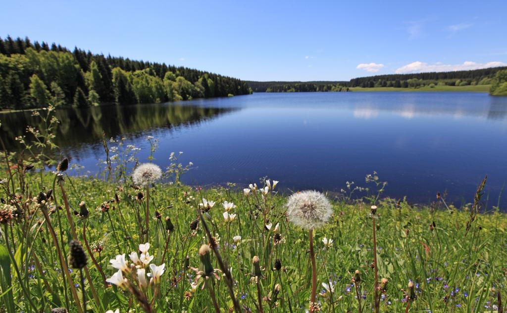 mandelholz-hochwasser