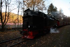 brockenbahn_steinernerenne