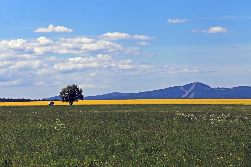 panorama-wurmberg