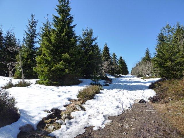wolfswarteweg-mit-schnee